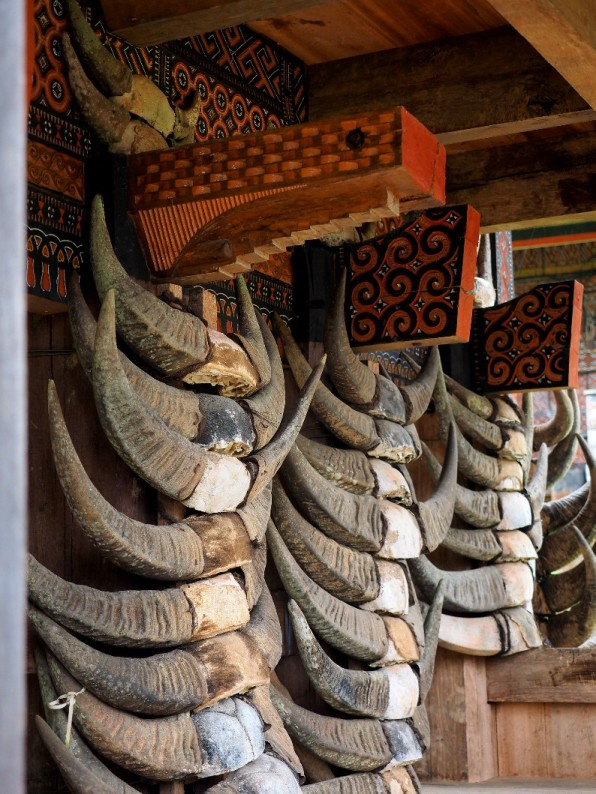 Buffalos are sacred creatures, and displaying buffalo horns is a sign off wealth